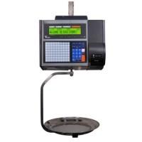 Весы торговые Digi SM-5100CS H Ethernet до 30 кг, с печатью этикетки