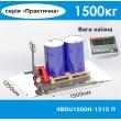 Весы наездные 1250х1500 мм с пандусами 4BDU1500H ПРАКТИЧНЫЕ (до 1500 кг)