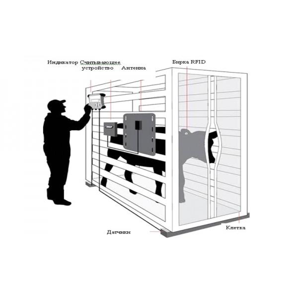Весовая система идентификации животных Tru-Test