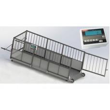 Весы животноводческие для свиней 4BDU-600X, НПВ: 600кг, 2000х800х760мм ПРЕМИУМ