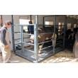 Весы животноводческие для взвешивания свиней, мелкого и крупного рогатого скота УВК-СС 1250х2000х1500мм, НПВ: 1500кг